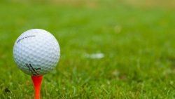 Tee Ball Golf Golfer Course